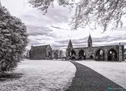 Bild: Fortrose Cathedral Infrarot / MG_9953-Fortrose-Cathedral-ir.jpg