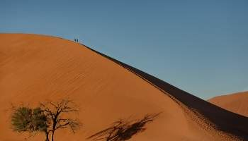 {IMAGE_CAPTION} / 302-Namibia-sossusvlei.jpg